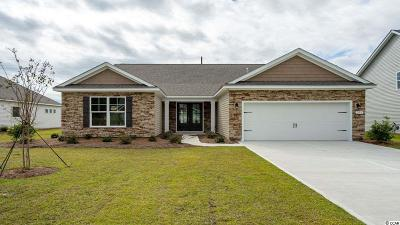 Single Family Home For Sale: 291 Star Lake Dr.