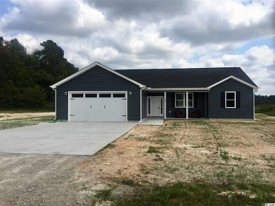 Conway SC Single Family Home For Sale: $195,780