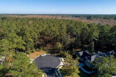 Georgetown County, Horry County Residential Lots & Land For Sale: 639 Nautilus Dr.