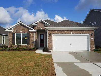 Single Family Home For Sale: 2667 Stellar Loop