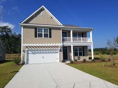 Single Family Home For Sale: 270 Star Lake Dr.