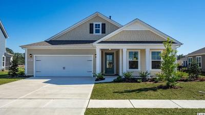 Single Family Home For Sale: 2835 Stellar Loop