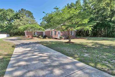 Pawleys Island Single Family Home For Sale: 180 Duncan Ave.