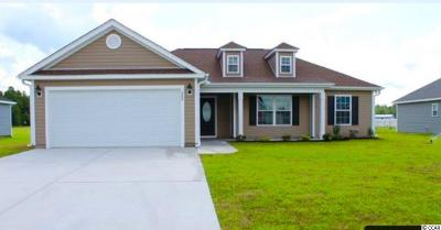 Galivants Ferry SC Single Family Home For Sale: $169,000