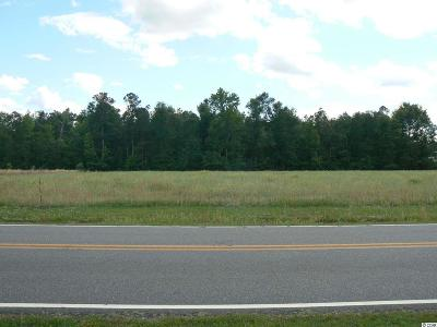 Galivants Ferry SC Residential Lots & Land For Sale: $125,000