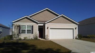 Myrtle Beach Single Family Home For Sale: 858 Hayes Point Circle