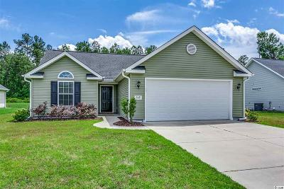 Myrtle Beach Single Family Home For Sale: 248 Ackerman Dr.