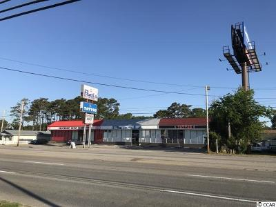 Horry County Commercial For Sale: 3106 Highway 17 South