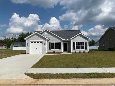 Conway Single Family Home For Sale: 233 Maiden's Choice Dr.