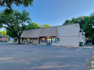 Georgetown County Commercial For Sale: 2010 Highmarket St.