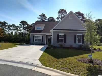 Myrtle Beach Single Family Home For Sale: 5577 Plantersville Pl.