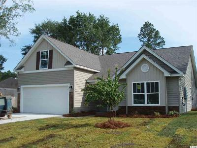 Myrtle Beach Single Family Home For Sale: 207 Sugar Tree Dr.