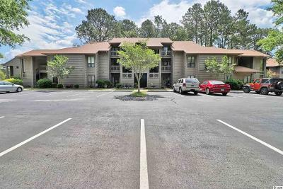 Murrells Inlet Condo/Townhouse For Sale: 1002 Indian Wells Ct. #1002