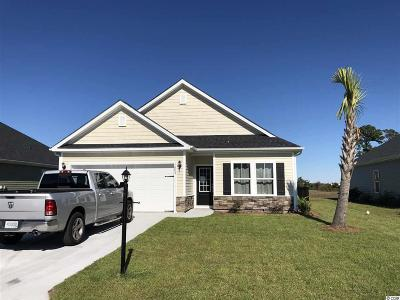 Myrtle Beach Single Family Home For Sale: 1683 Palmetto Palm Dr.