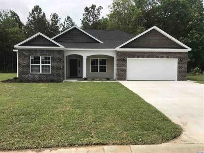 Myrtle Beach SC Single Family Home For Sale: $289,999