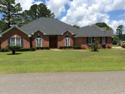 Myrtle Beach Single Family Home For Sale: 607 Winterberry Ln.