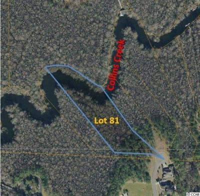 Georgetown County, Horry County Residential Lots & Land For Sale: Lot 81 Woody Point Dr.