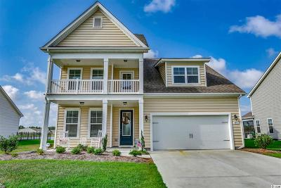 Myrtle Beach Single Family Home For Sale: 4951 Oat Fields Drive
