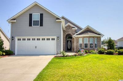 Murrells Inlet Single Family Home For Sale: 353 Southern Breezes Circle