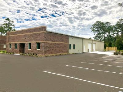 Horry County Commercial For Sale: 1601 Dividend Loop #Lot 32
