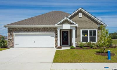 Myrtle Beach Single Family Home For Sale: 2725 Stellar Loop