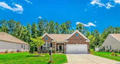 Little River Single Family Home For Sale: 719 Callant Dr.