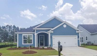 Myrtle Beach Single Family Home For Sale: 1633 Parish Way