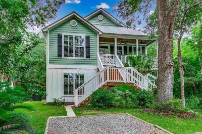 Georgetown County Single Family Home For Sale: 4756 Highway 17 Business