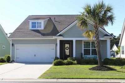 Surfside Beach Single Family Home For Sale: 302 Coral Beach Circle