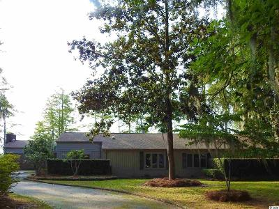 Georgetown County Single Family Home For Sale: 52 Trimmings Ct.