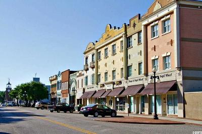 Georgetown Condo/Townhouse Active Under Contract: 815 Front St. #2G