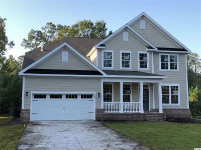 Georgetown County Single Family Home For Sale: 189 All Saints Loop