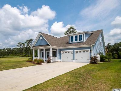 Georgetown County Single Family Home For Sale: 123 Southgate Ct.