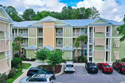 Georgetown County Condo/Townhouse For Sale: 70 Mingo Dr. #3B