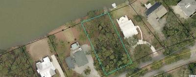 Georgetown County Residential Lots & Land For Sale: Lot 4 Luvan Blvd.