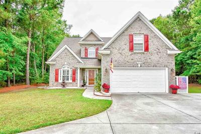 Horry County Single Family Home For Sale: 515 Turret Ct.