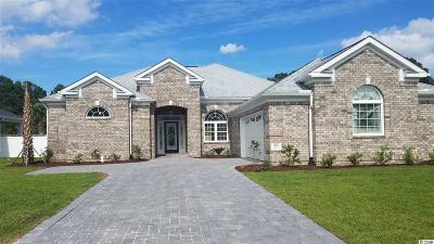 Horry County Single Family Home For Sale: 364 Waterfall Circle