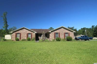 Georgetown County Single Family Home For Sale: 3749 Kent Rd.