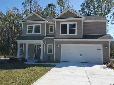 Pawleys Island Single Family Home For Sale: 165 Clearwater Dr.