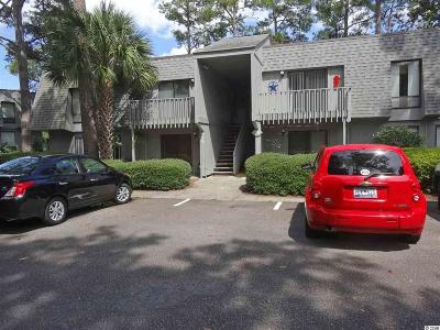 Georgetown County Condo/Townhouse For Sale: 435 Salt Marsh Circle #19A