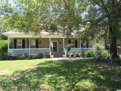 Conway Single Family Home For Sale: 975 Grace Dr.