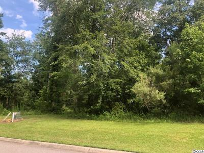 Horry County Residential Lots & Land For Sale: 646 Timber Creek Rd.