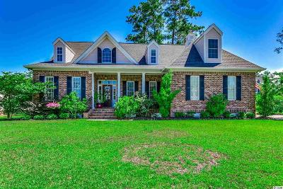 Georgetown County Single Family Home For Sale: 506 Woody Point Dr.