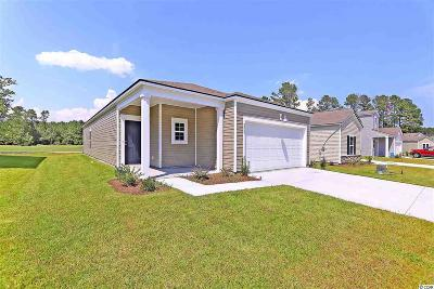 Horry County Single Family Home For Sale: 2087 Borgata Loop
