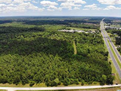Horry County Residential Lots & Land For Sale: 2298 W Highway 9
