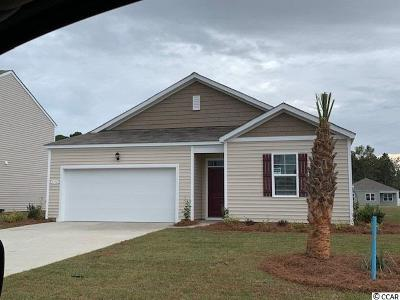 Horry County Single Family Home For Sale: 1712 Promise Pl.