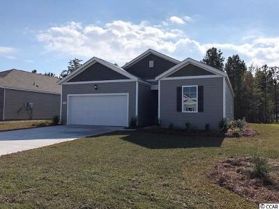 Horry County Single Family Home For Sale: 1724 Promise Pl.