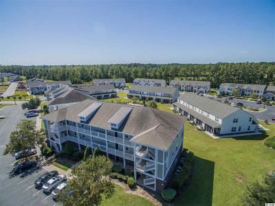 Horry County Condo/Townhouse For Sale: 216 Castle Dr. #1391