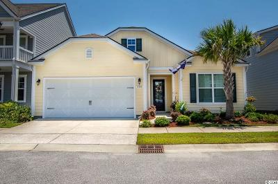 North Myrtle Beach Single Family Home For Sale: 408 Lorenzo Dr.