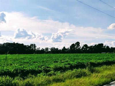Aynor SC Residential Lots & Land For Sale: $49,900